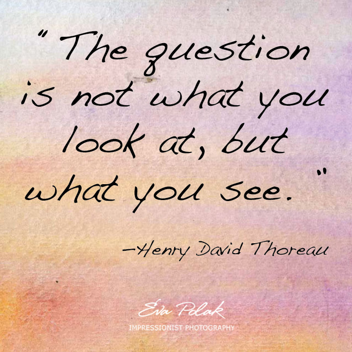 """The question is not what you look at, but what you see. ""  —Henry David Thoreau"