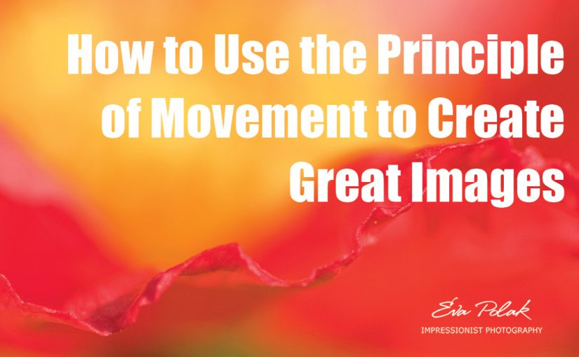How to Use the Principle of Movement to Create Great Images