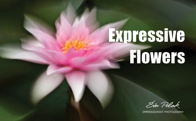 Expressive Flowers