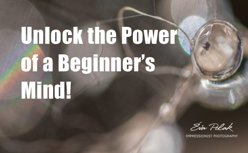 Unlock the Power of a Beginner's Mind!