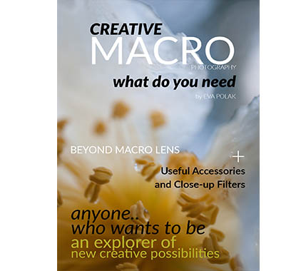 What do you need for creative macro photography