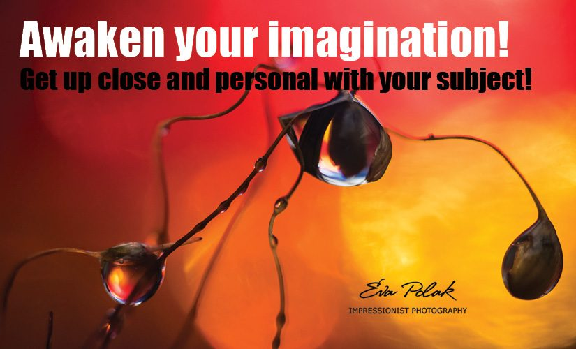 Awaken your imagination!