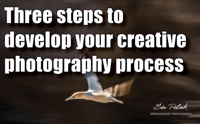 Three steps to develop your creative photography process.