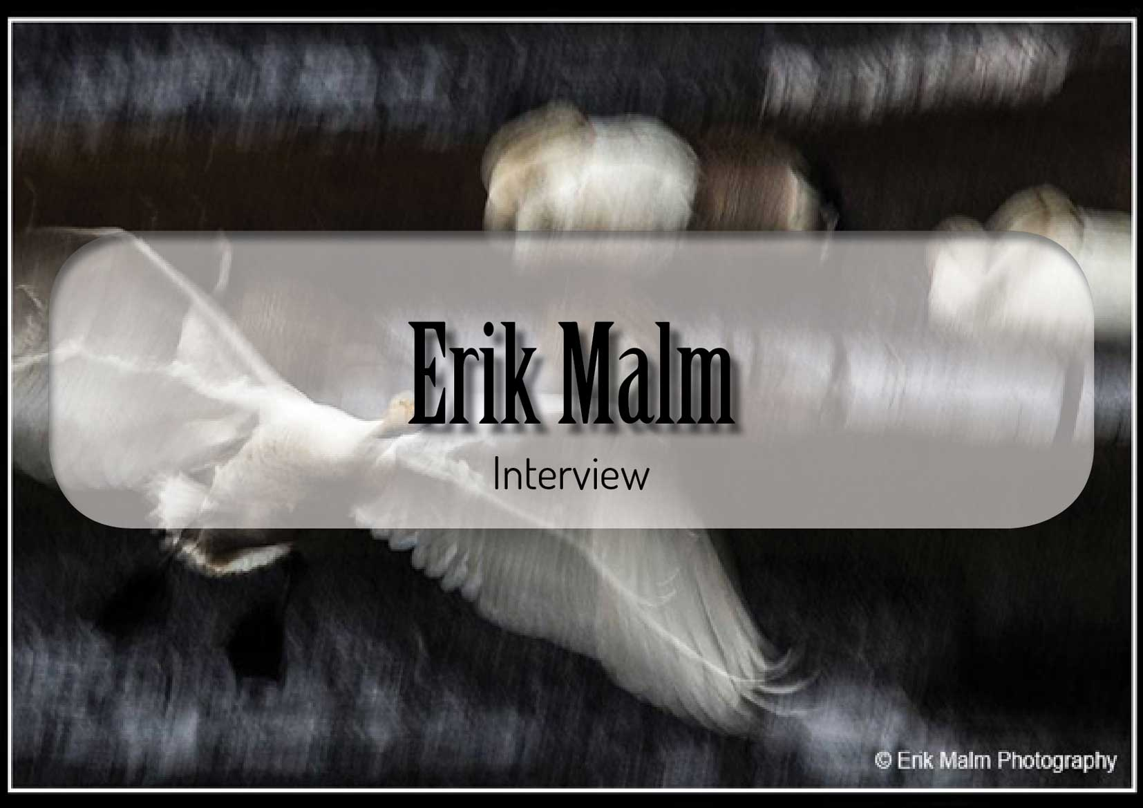 Eric Malm Interview