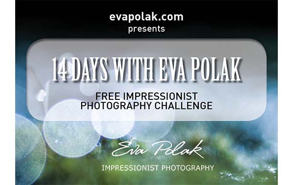 Impressionist Photography Challenge banner