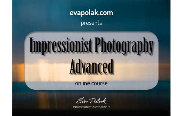 Impressionist Photography Advanced Banner