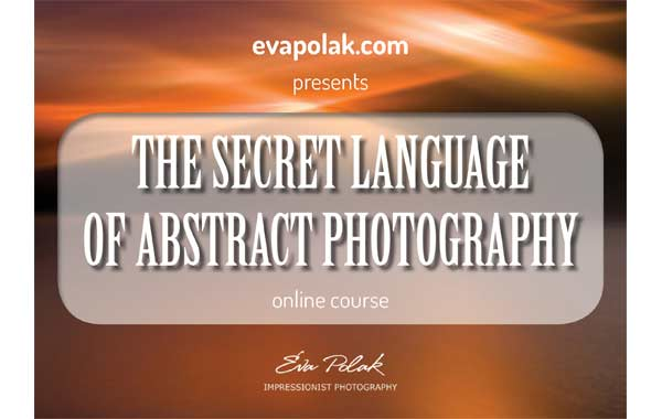 The Secret Language of Abstract Photography Workshop banner