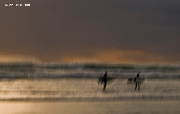 sunset surfers bethells beach