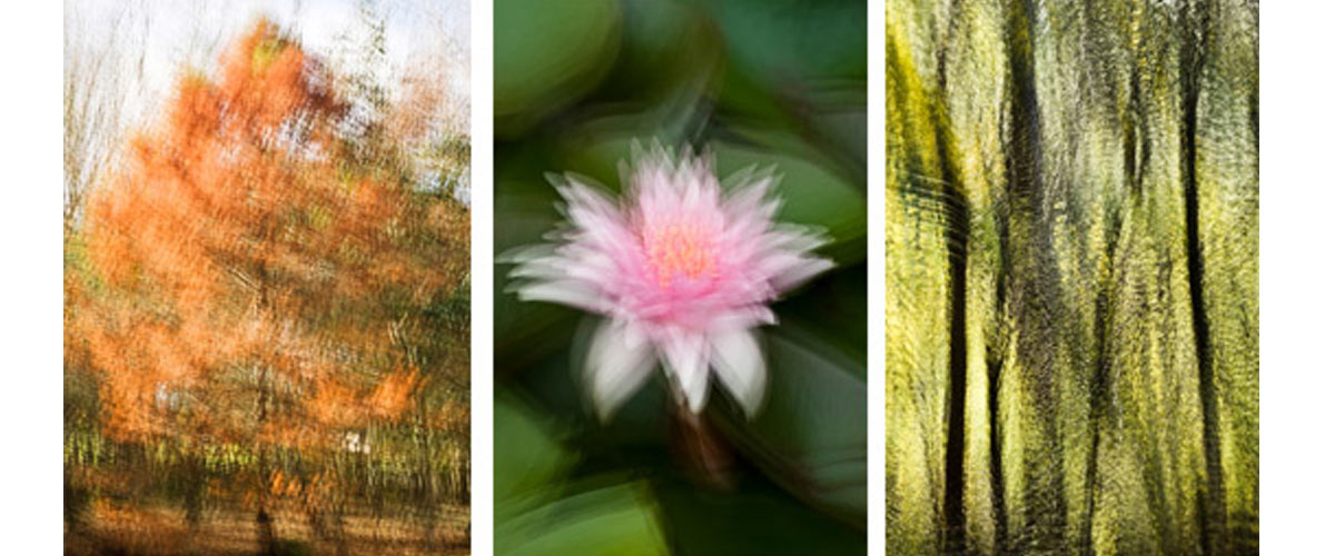 Impressionist multiple exposure images