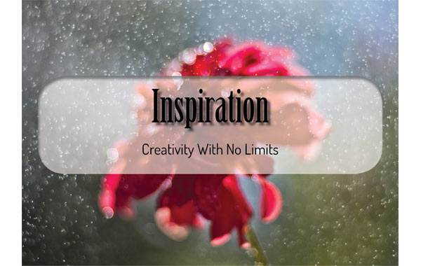 Image of inspiration header