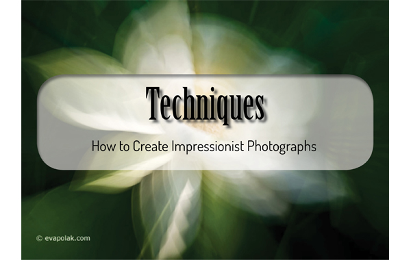 Image of techniques header