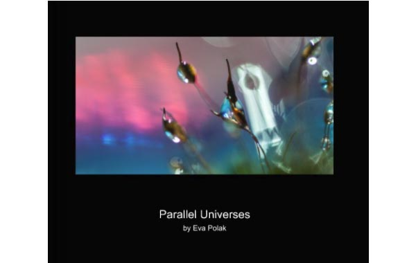 Parallel universe book cover