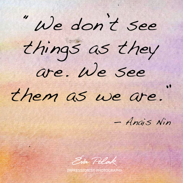 """We don't see things as they are. We see them as we are."" — Anais Nin"
