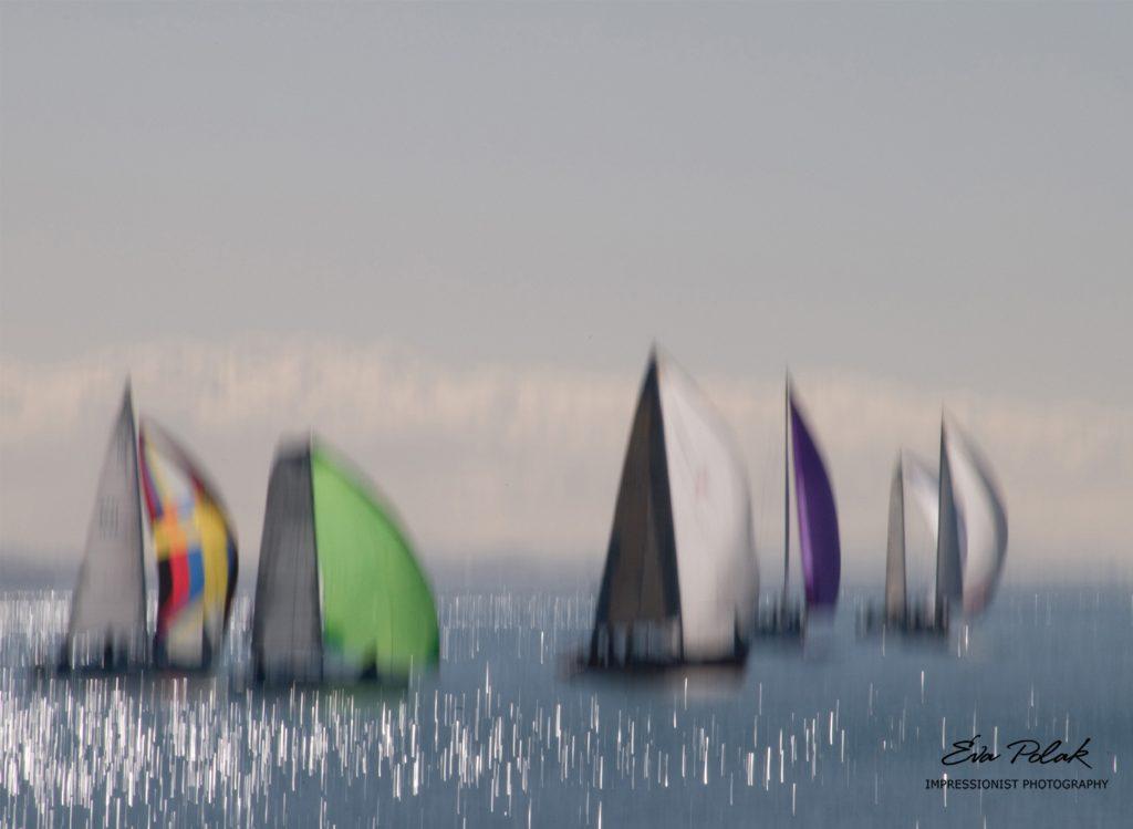 sail-boats