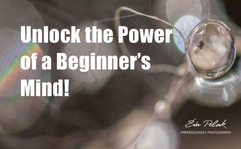 Unlock the Power of a Beginner's Mind!