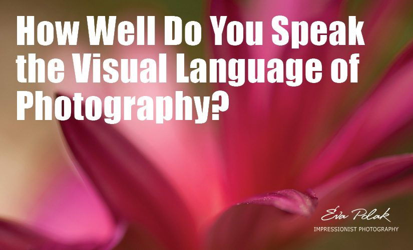 How Well Do You Speak the Visual Language of Photography?