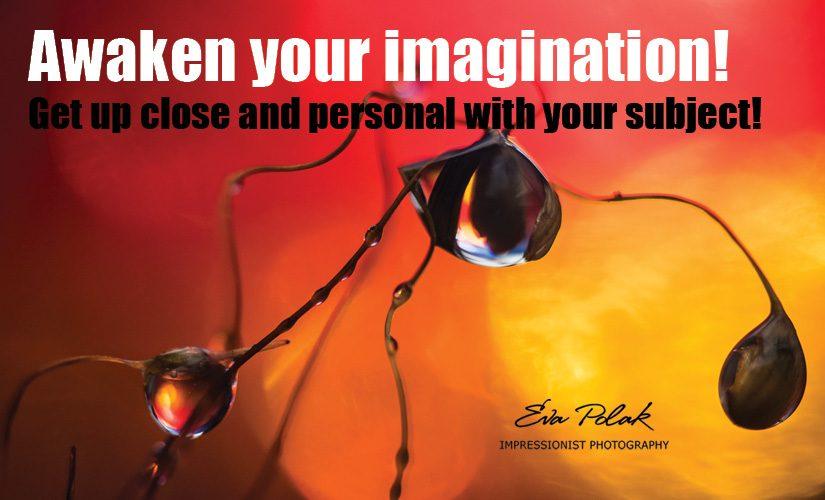 Awaken your imagination!