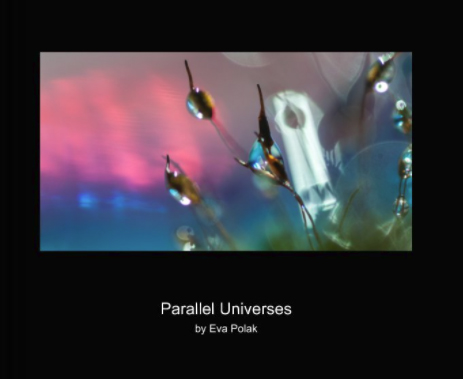 Parallel Universes – new book