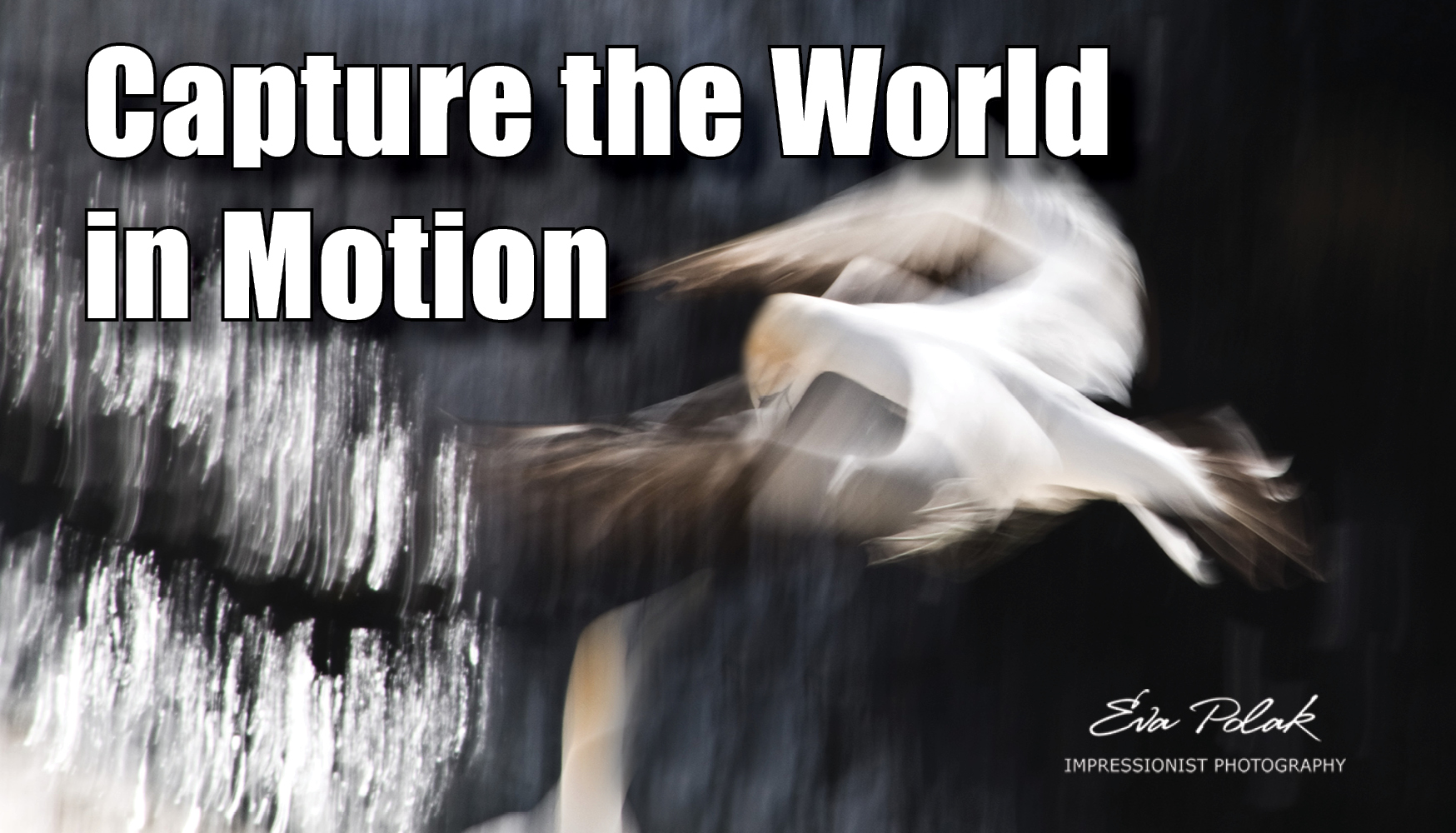 Capture the world in motion